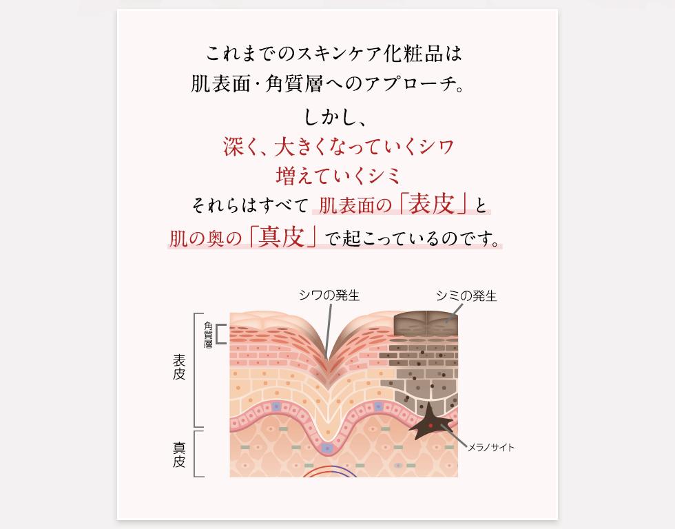 これまでのスキンケア化粧品は肌表面・角質層へのアプローチ。しかし、深く、大きくなっていくシワ増えていくシミそれらはすべて肌表面の「表皮」と肌の奥の「真皮」で起こっているのです。